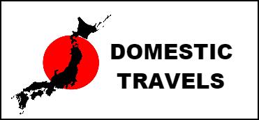 Domestic-Travels2
